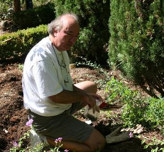A volunteer helps in the garden