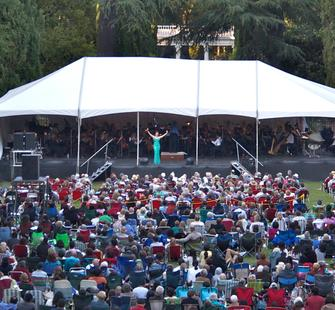 Lisa Vroman performs at a concert on the Great Lawn