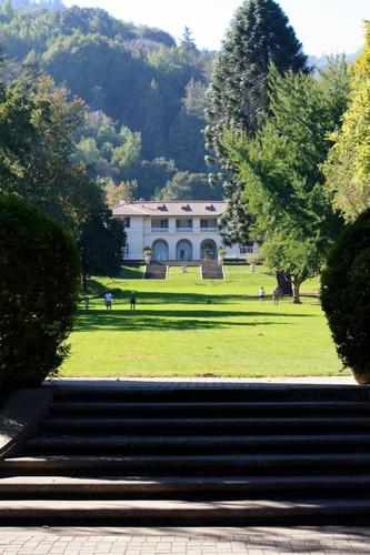 The Great Lawn at Montalvo