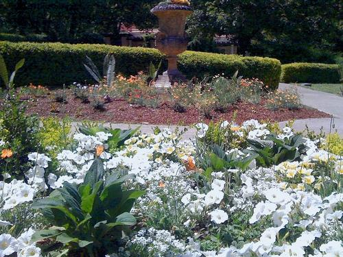 Spring flowers visible from the Oval Garden