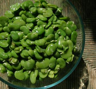 A bowl of perfectly prepared fava beans.