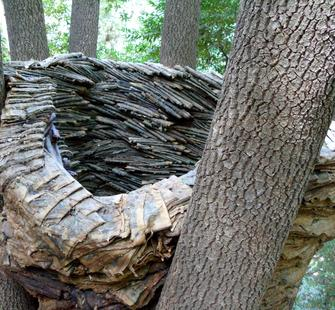 """Nest"" (2005) by Steven Siegel"