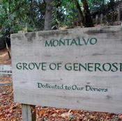 The Grove of Generosity