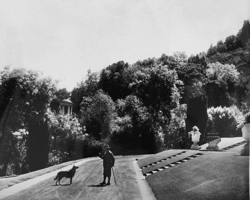 James Duval Phelan and his dog Boz, Montalvo, 1927, photographer unknown. James D. Phelan Photograph Albums, 1902-1928.