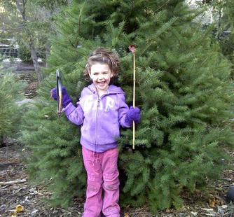 Happiness is cutting dow your first Christmas tree