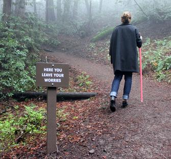 A Healing Walk, 2012, Wood, paint and hardware, Nine signs installed along nature trail at Montalvo Arts Center