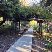 Great Lawn Border Garden