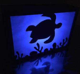 Shadow Box: Endangered Marine Species