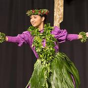 Hawaiian Dance and Art