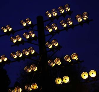 "Bruce Munro: ""Parliament of Owls"""